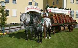 Salzburg Stiegl Brauwelt