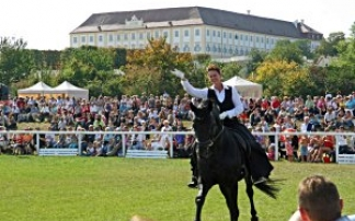 Festival der Tiere