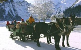 Pferdekutschen- und Pferdeschlitten-Fahrten in Tannheim