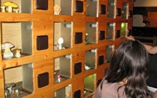 Einöde Pilzmuseum