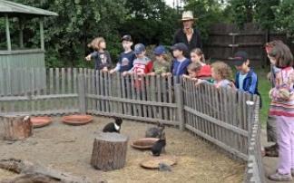Vienna Kids Farm