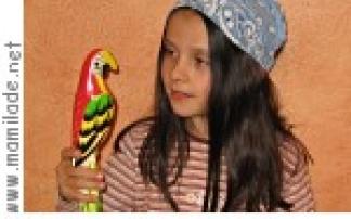 Kindergeburtstag Piratenschiff Aachener Zoo