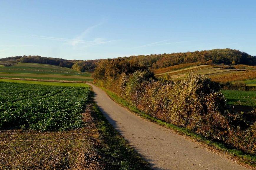 Kraftweg Burgenland