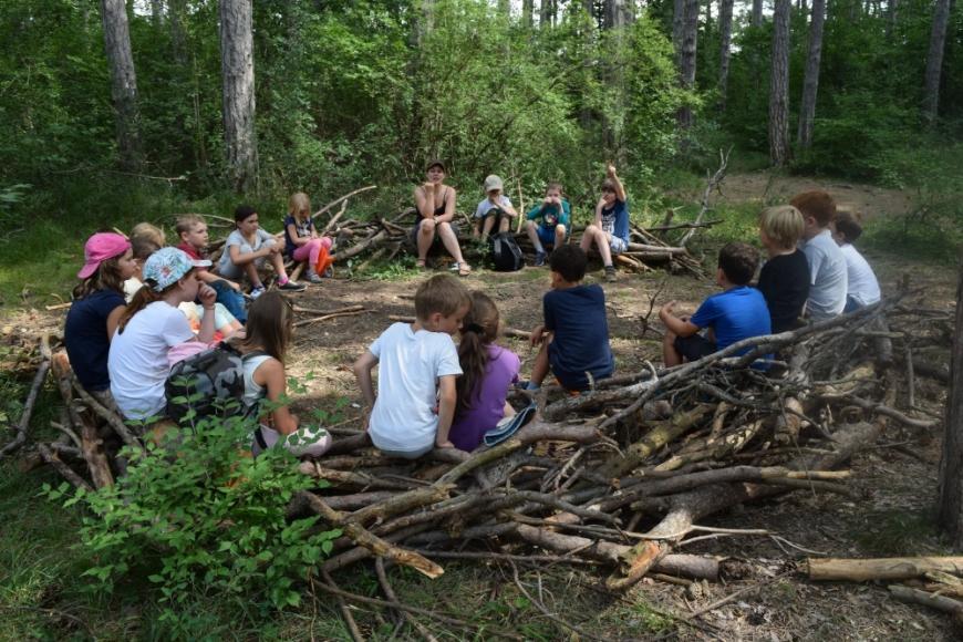 Wald-Geburtstag mit Naturplus