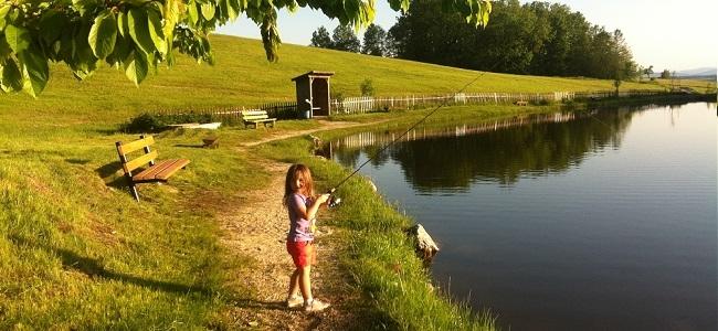 Angeln am Fischteich Huber