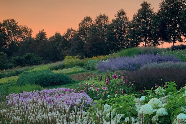 Garten der Geheimnisse