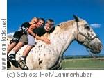 Kinder-Pferdefest auf Schloss Hof