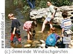 """Sommerprogramm """"Faszination Wasser"""""""