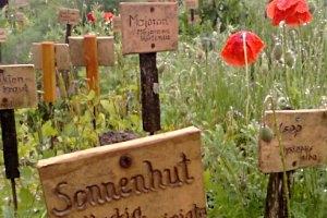 Kräutergarten Klaffer