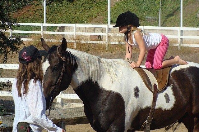 Ponyführen am Pferde- und Ponyhof Wörth
