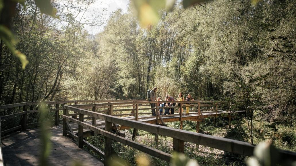 """Themenweg """"Lettmair Au""""  im Nationalpark Gesäuse"""