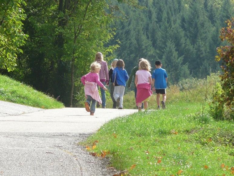 Symbolfoto Krumbach: Wanderung zum Wildgehege