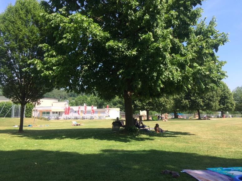 Schattenplätze dank großer Bäume