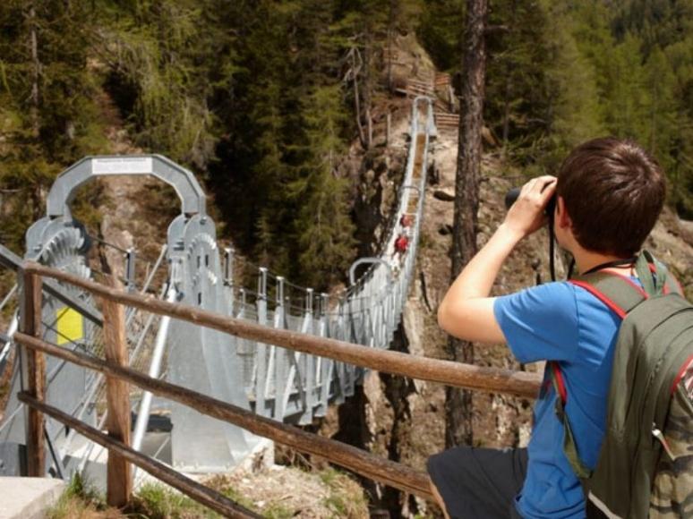 Talrundweg Kals am Großglockner - Hängebrücke