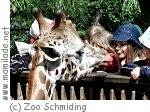 Schule im Zoo Schmiding