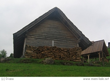 Keltendorf am Dürrnberg