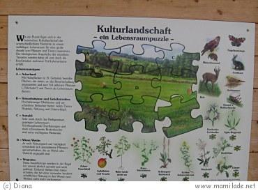 Heckenlehrpfad