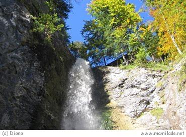 Wasserweg Ebenau