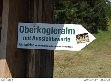 Aussichtsturm Wörschachberg