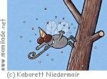 Niedermair
