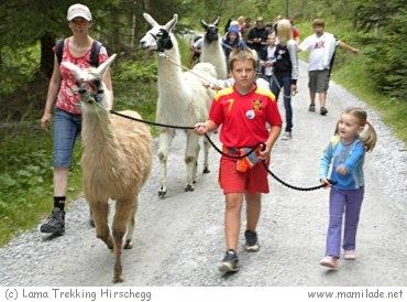 Lama Trekking Hirschegg