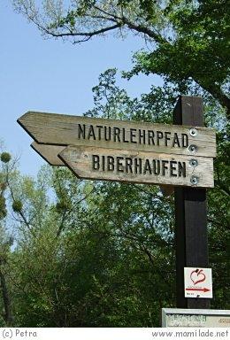 Naturlehrpfad Lobau