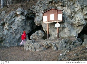 Pfaffstättner Kogel - Einödhöhle