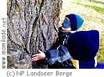 Naturpark Landseer Berge Abenteuer Wald