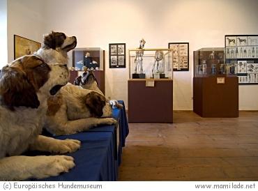 Europ. Hundemuseum im Kloster Marienberg, Mannersdorf
