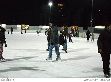 Die Albert Schultz Eishalle in Wien-Donaustadt