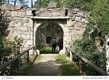 Ruine Arbesbach - Der Stockzahn des Waldviertels