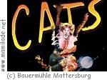 Musical-Tanzworkshop in der Bauermühle Mattersburg