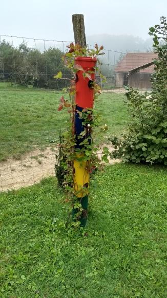 Straussenfarm Auffen