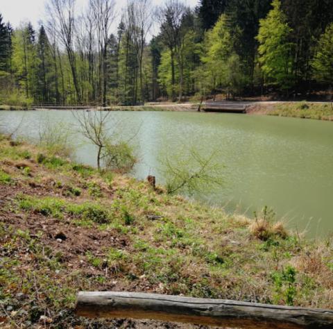 Mami-Check: Naturpark Sparbach