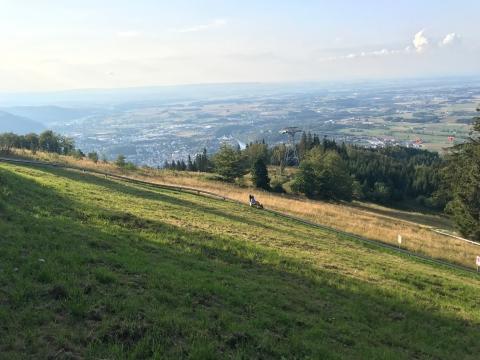 Grünberg-Flitzer