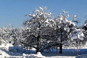 Winterwanderung in Gallspach, copyright: Diana