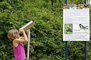 Vogelkundeweg Gutau, copyright: Gemeinde Gutau