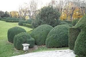 Der Schlossgarten von Schloss Halbturn (c) SK