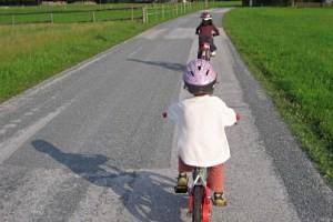 """Karnische Radwanderweg """"R3"""", copyright: Diana"""