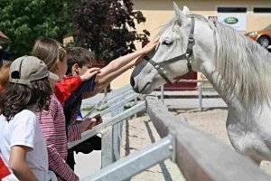 Lipizzanerwelt Kindererlebnisweg (c) Spanische Hofreitschule – Bundesgestüt Piber