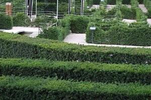 Labyrinth Schönbrunn (c) PB