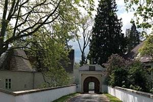 """Der Natur auf der Spur"" im Museum Schloss Lackenbach (c) Esterházy Privatstiftung"