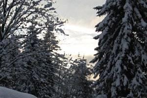 Winterwanderung in Liebenau, copyright: Diana