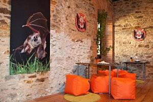 Burgerlebnis: Fledermaus in Lockenhaus (c) Burg Lockenhaus