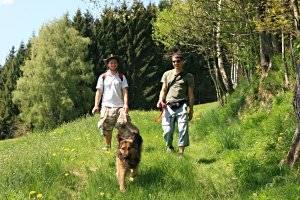 Irrsee-Wildeneck Wanderung, copyright: www.mondsee.at