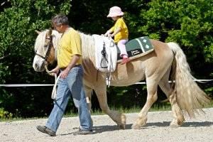 (c) Pferdestall Wiesn