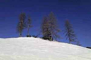 Schneeschuh wandern auf dem Raxplateau (c) PB