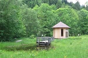 Arboretum Abersee, copyright: Diana