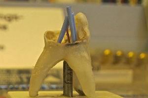(c) Linzer Museum für die Geschichte der Zahnheilkunde in OÖ