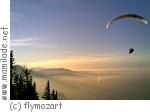 Salzburg flymozart